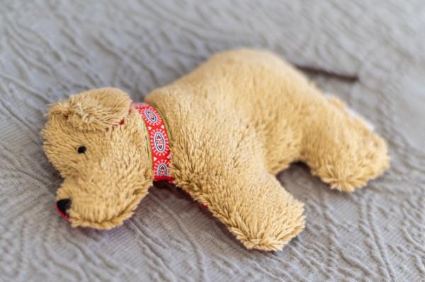 Babykissen Lenni der Hund mit Traubenkernfüllung - Bio Plüsch