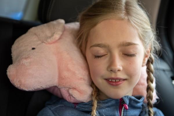 Schlaf - und Kuschelkissen Jule das Schweinchen - Bio Plüsch