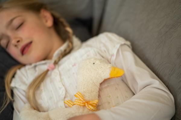 Kinderkissen Greta die Gans mit Traubenkernfüllung - Bio Plüsch