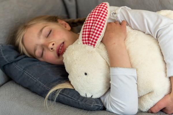 Schlaf - und Kuschelkissen Hennes der Hase - Bio Plüsch